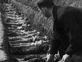 再现纳粹集中营惨状:美军解放后掩埋尸体(组图)